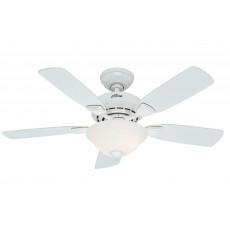 Hunter Caraway Ceiling Fan Manual 1