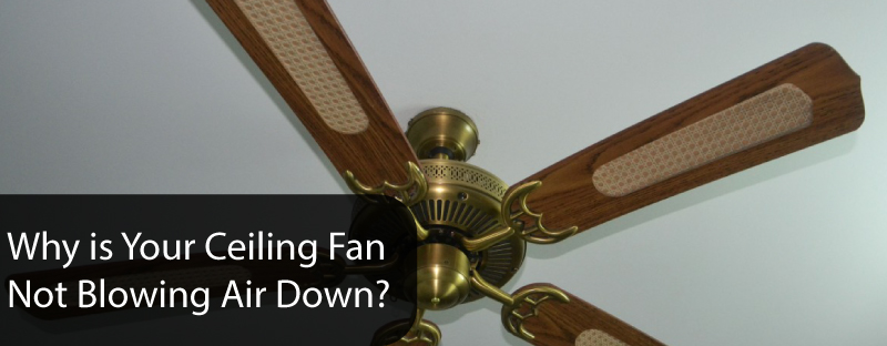 Why is Your Ceiling Fan Not Blowing Air Down?