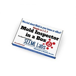 DIY Mold Test Kit (3 Tests) Expert Consultation